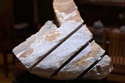 Stone Carver's Suite